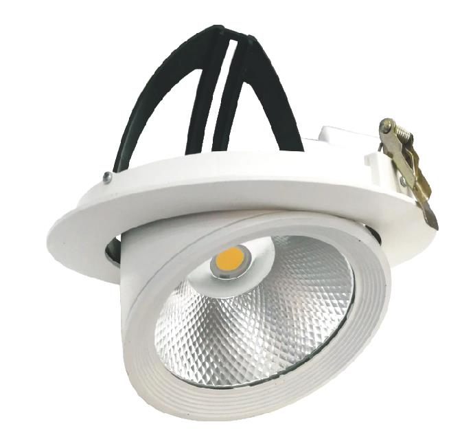Faro LED COB 30W a incasso Orientabile 360 gradi 220v foro incasso 180-245 mm
