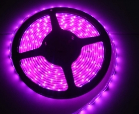 Striscia Led Rosa Fucsia Fuxia Bobina 5 Metri 5m Alta Luminosita' 300 Led Strip