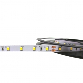 Striscia Led 5m smd2835 300led 36w 24v strip Bobina Metri