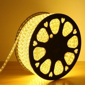 50m Striscia Led smd 5050 da 2