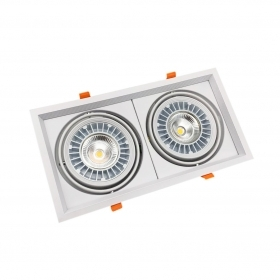 LED spotlight COB 2x20w led floodlight recessed adjustable ferrule i5-20WX2